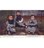 Three of China's little ones